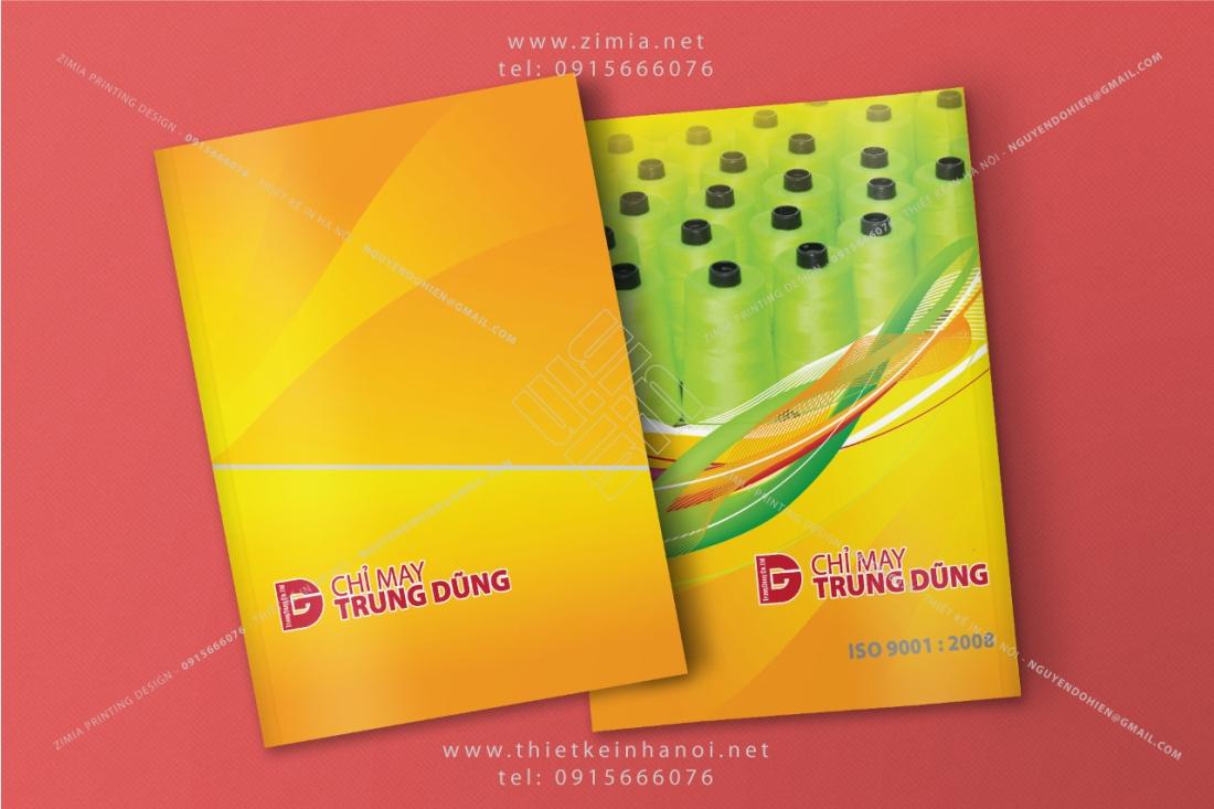 Mẫu catalog công ty đẹp tông màu vàng