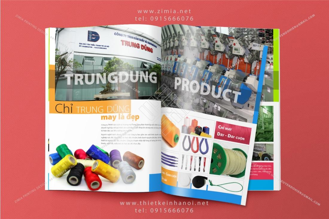 Mẫu catalog giới thiệu profile công ty